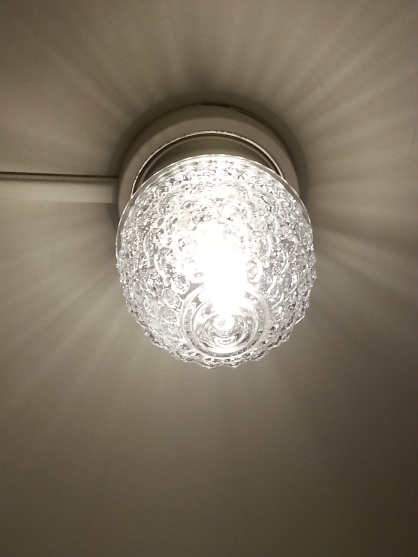 Our hall light buzzes sooo loud-but it's really cute!