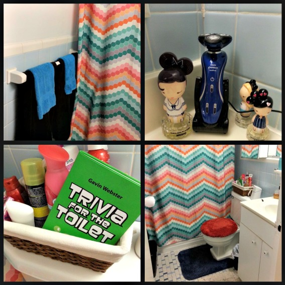 Our Bathroom. It's pretty small, so I made a collage! Also, Trivia for the Toilet (A gift from my brother Josiah) is an amazing book and you should all own it!